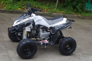 Jinyi Factory The Cheap Wholesale 110cc ATV for Kids (JY-100-1A) pictures & photos