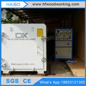 Dx-10.0III-Dx 10cbm Hf Vacuum Timber Wood Drying Machine for Furniture