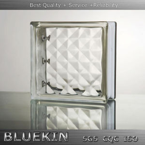 Bathroom Hollow Glass Block with Factory Price