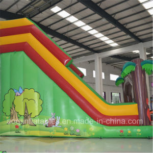 Inflatable Monkey Funny Slide with Both Channe (AQ09102-1) pictures & photos