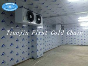 Meat Cold Room/Cold Storage/Quick Freezer/Freezer Room pictures & photos