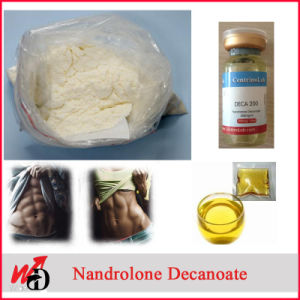 Weight Loss Anabolic Steroids Powder Nandrolone Phenylpropionate pictures & photos