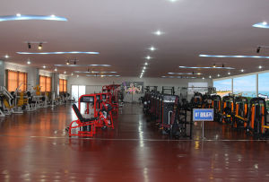 Club Use Gym Machine / Fitness Equipment for Dumbbell Rack-Double (FW-2015) pictures & photos