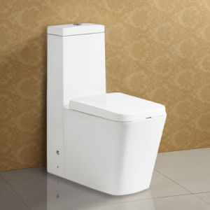 2015 New Arrival Star Hotel Sanitary Ware Dual Flush Toilet Bowl pictures & photos