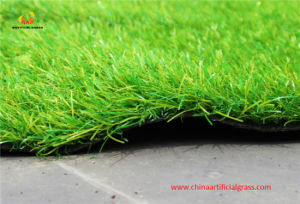Passed SGS! ! Synthetic Grass Turf pictures & photos