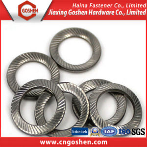 DIN 9250 Lock Washers with Doule Faced Printing pictures & photos
