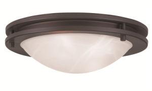 Moderm Simplism Style Ceiling Light (7057-07)