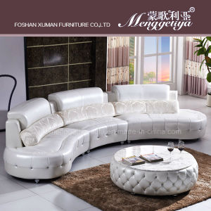 Living Room Leather Sofa (893#)