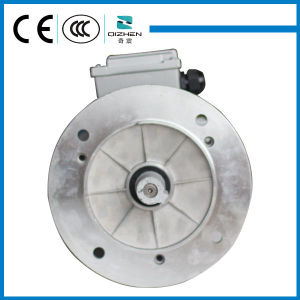 MS Series Three Phase Induction Motor with B5 Flange pictures & photos