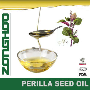 Wholesale Perilla Leaf Oil Perilla Seed Powder Perilla Leaf Extract