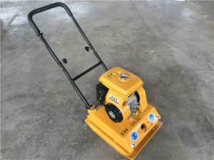 Plate Compactor pictures & photos