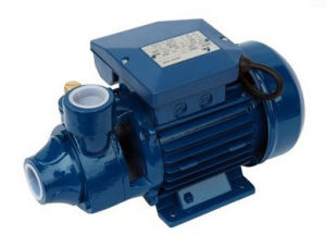 0.5HP Pm45/Pm Series Clear Living Water Supply Vortex Water Pump