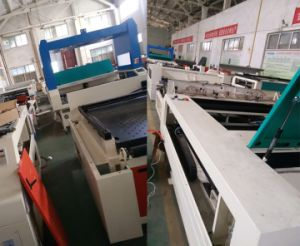 Garment Laser Cutting Machine for Chiffon Fabric Cutting pictures & photos