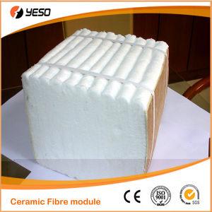 1600 C Ceramic Fiber Module