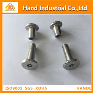 Flat Torx Slot Head with Pin Chicago Screw pictures & photos