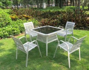 New Leisure Garden Rattan Set (WS-155839) pictures & photos