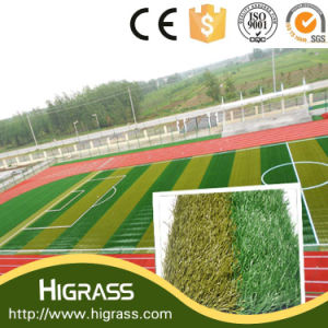 High Standard Synthetic Football Turf for Soccer pictures & photos