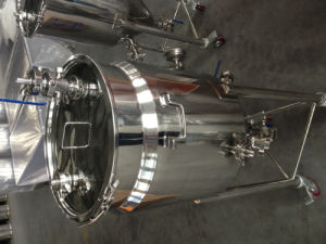 20 Gallon Jacketed Conical Fermenter pictures & photos