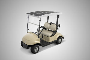 Battery Operated Golf Cart for 2 People, Solar Energy