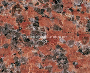 Natural Stone Granite G562 Maple Red Slabs for Tiles and Countertops
