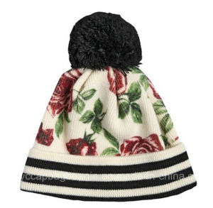 Winter Knitted Hats / Beanie Hat / Winter Hat pictures & photos