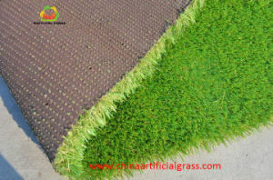 Natural Grass Carpet Supplieranufacturers At Alibaba Com