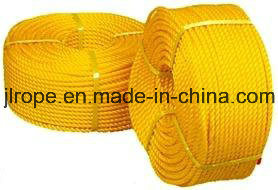 3 Strand Rope/PP Rope/Polypropylene Rope pictures & photos