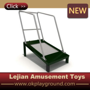 2016 Hot Selling Children Fitness Equipment (12164L) pictures & photos