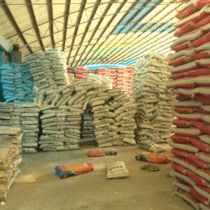 Di-Sodium Phosphate DSP Materials pictures & photos
