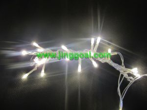 Decorative LED Light String pictures & photos