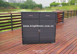 Rattan Wicker Shoe Cabinet Bp-S51 pictures & photos