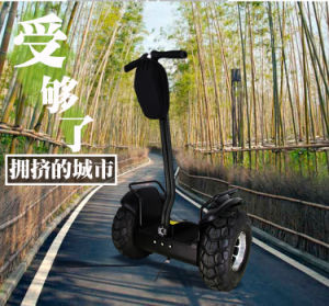 New Personal Mini Transport Vehicle Two Wheels Chariot pictures & photos
