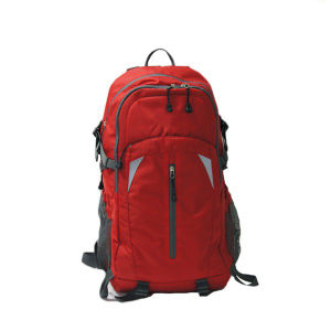 Outdoor Hiking Brand Customized Backpack Walking Billboard Sh-15113023 pictures & photos