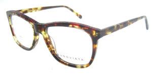 2016 Designer Optical Frames High Quality Eyeglass Spring Hinge pictures & photos