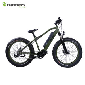 1000W Electric Bike with Bafang MID Drive Motor pictures & photos