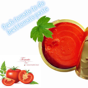 Italian Canned Tomato Paste (400g Petti brand) pictures & photos