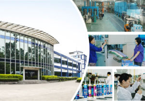Weatherproof and Weather-Resistance, Anti-Mould Neutral Glass Glue, Silicone Sealant (N31) pictures & photos