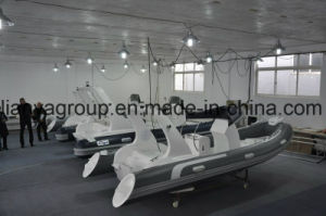 Liya 5.2m Luxury Rib Boat RC Boat pictures & photos