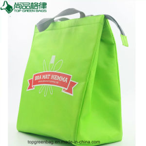 OEM Reusable Eco-Friendly Non Woven Cooler Bag Thermal Insulating Cool Food pictures & photos