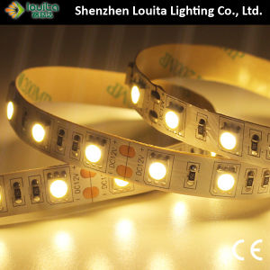 High Lumen 5050 White Color LED Strip pictures & photos