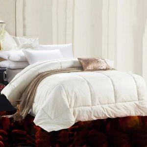 Hot Sale All Size 100% Cotton Hotel Microfiber Duvet (JRD532)