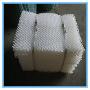Chinese Excellent Plastic Mesh pictures & photos