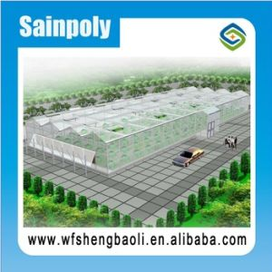 Easily Installed Agricultural/ Commercial Greenhouse for Potato Growing pictures & photos