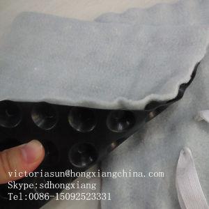 Plastic Drainage Dimple Sheet pictures & photos