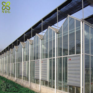 Top Quality Commercial Glass Greenhouse pictures & photos