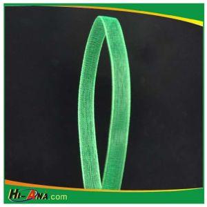 Organza Ribbon pictures & photos