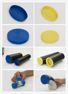Plastic Caps for Pipe Fittings pictures & photos