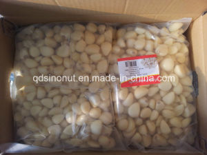 New Crop Fresh Peeled Garlic (in nitrogen bag or plastic jar) pictures & photos