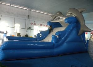 Inflatable Slide Bouncer Jumping. Giant Inflatable Water Slide Water Park pictures & photos