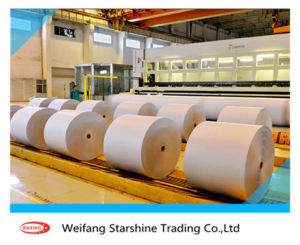 High Quality Light Weight Coated Paper of Jinzhou pictures & photos